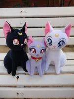 Sailor Moon Cats by renataeternal