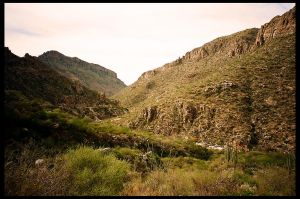 Sabino Canyon by rifka1