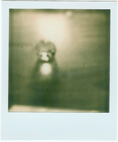 Polaroid 2_4 by Rechbi