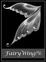 Fairy Wing by MajcheZmajche