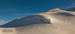 Pristine Powder by quintz