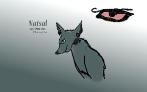 Natsal - Last of the four by FinalFantasy564