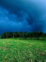 Dark skies, green grass by Janels