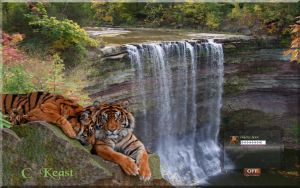 BallsFalls Tigers v2 by orionshope