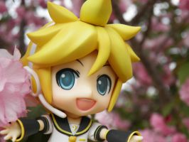 Len Loves Spring by Yami-Usagi