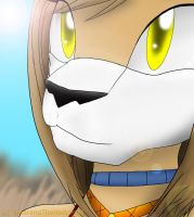 the Lioness of the Savanna by AokitianWolf
