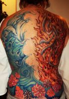 Water and Fire with Lotus Flowers by phoenixbay