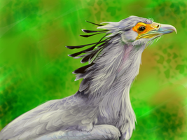 Secretary Bird - first paint FINISHED :D by ErisLeea