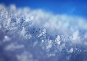 Winter's flake by Elfvingphotography