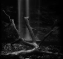 Darkness Falls by nectar666
