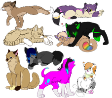 Colored Sketch Compilation by Candle-Light-Secrets