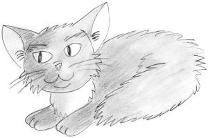 Fluffy Kitty Drawing by AtticusBlackwolf