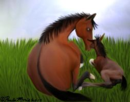 Horse and Baby Colt by youlittlemonkey