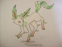 Leafeon by Chimraff