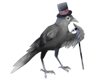 fancy bird by o0WhiteRaven0o