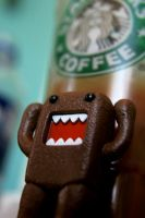 DOMO Starbucks by CaseyAdamF