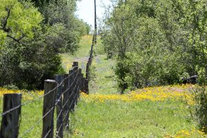 Fence Line 1 by Ironmountain01