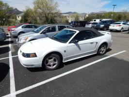 2004 Ford Mustang Convertible (SN-95) by TheHunteroftheUndead