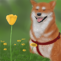 Doge by GreenPoem
