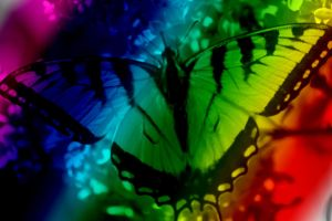 Rainbow Butterfly by Laur720