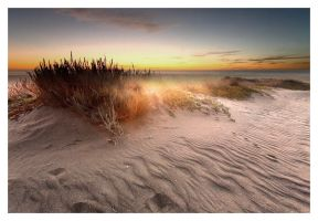 The Dunes 8 by austinboothphoto