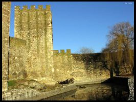 moat by Terza