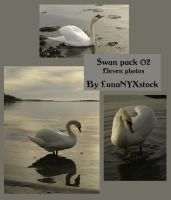 Swan pack - 02 by LunaNYXstock