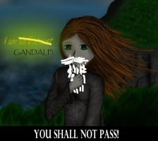 I am Gandalf by Kaida-Mizu
