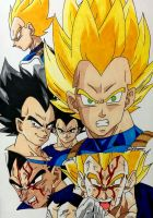 Vegeta Collage 2 by gokujr96