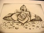 Dewdropped Rose by Sherrielb86