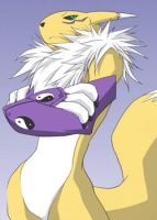 Angry Renamon by KissCrash