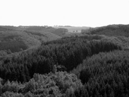 Luxembourgish Countryside 3 by maradong