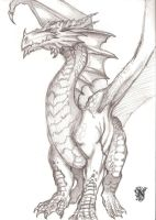 Red Dragon by Wild-Huntress