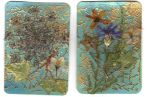 ATC flowers by Annette29