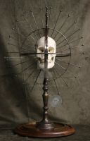 Craniometer skull Oddities obscure steampunk metal by Sculptured