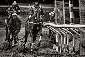 Horseracing -Full Throttle by AndersStangl