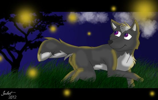 Fireflies in the Air by hey-swag