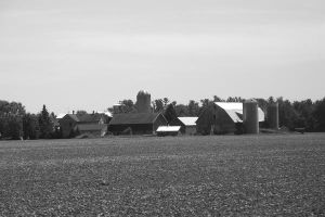 Rural Scenes Black and White by ladybard96