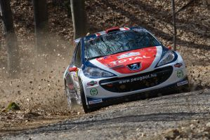 Rally Eger 2010 _1_ by schwepes