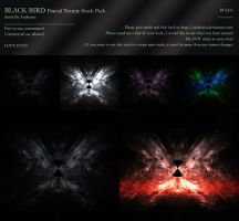 FREE STOCK: Black Bird by Andecaya