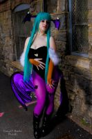 Morrigan 9 by Lily-in-Leather