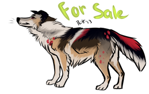 Collie adoptable USD SOLD by Psitt