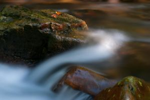 Flow by Leif-H