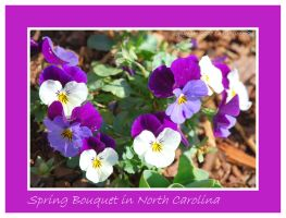 Spring Bouquet in N.C. by LadyAliceofOz