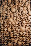 Skulls by AllenNecchi