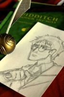 Harry Potter (AVAILABLE) by jaymetwins