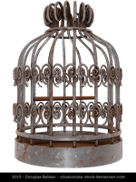 Bird Cage by oilusionista-stock