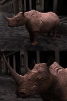 Rhino Texturing by studentsofcogswell