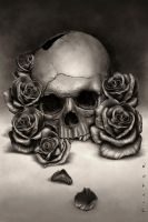 Skull and Roses by RodgerPister