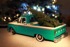 Hauling The Mini Tree Home! by KyleAndTheClassics